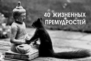 40 ЖИЗНЕННЫХ ПРЕМУДРОСТЕЙ