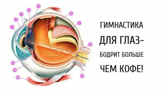Гимнастика для глаз — бодрит лучше кофе!